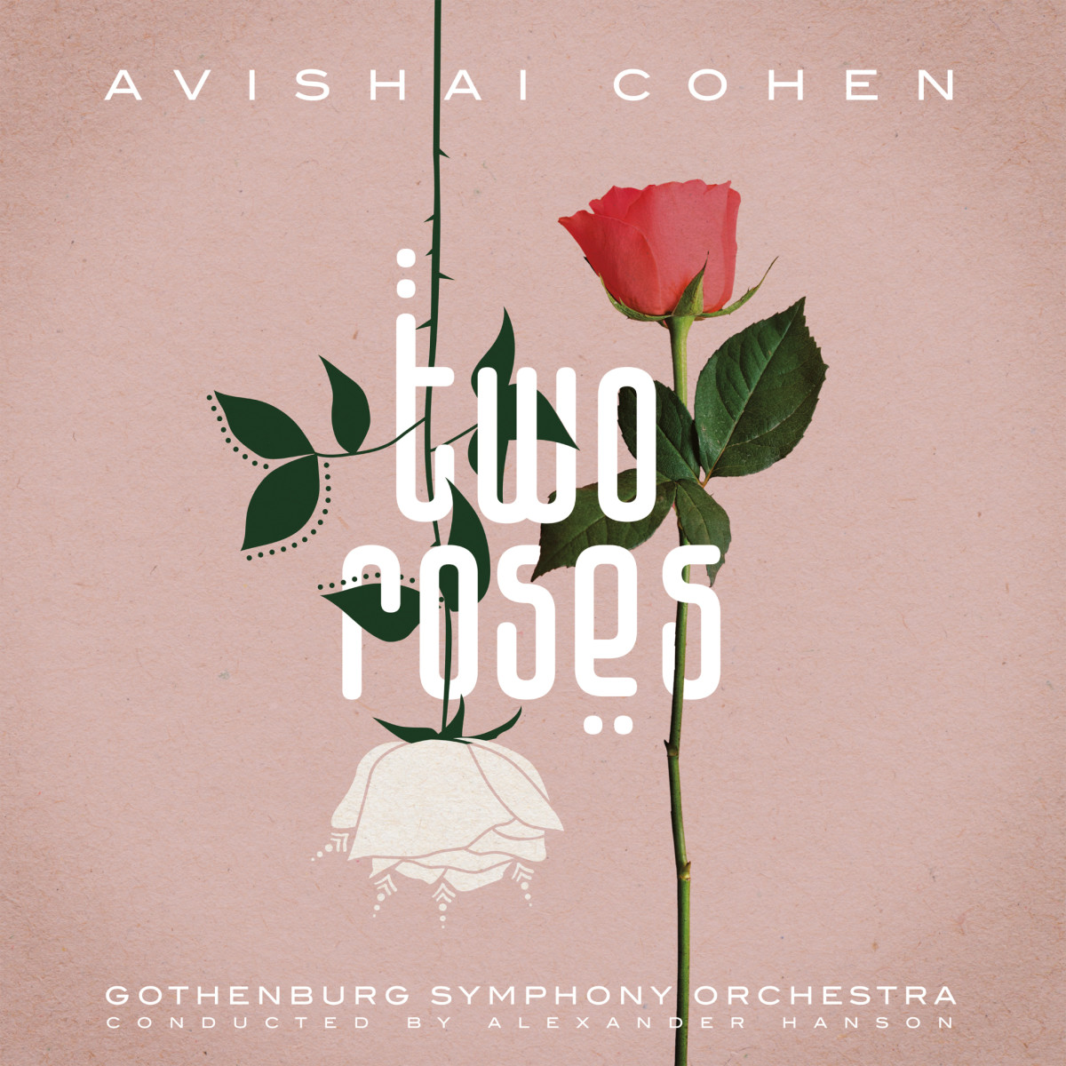 avishaicohen-tworoses_cover